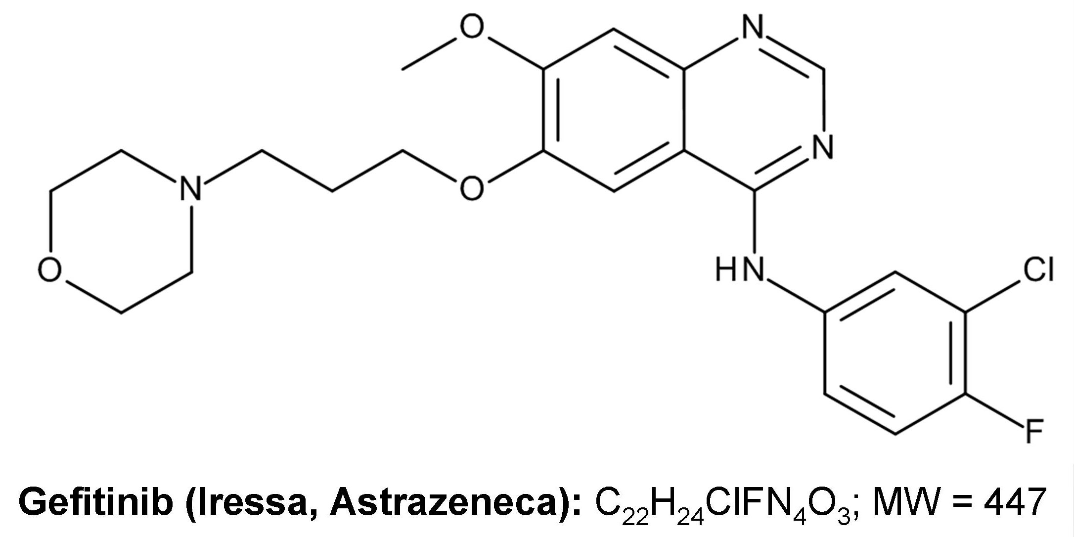 FDA-approved protein kinase inhibitors/US Food and Drug